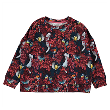 Sudadera Molo Kids Mandy estampado